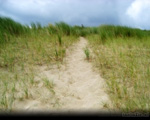 Cloudy Dune Route